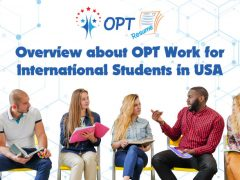 Optional Practical Training - OPT Jobs